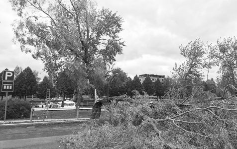 Myrsky ja kiinteistövakuutus